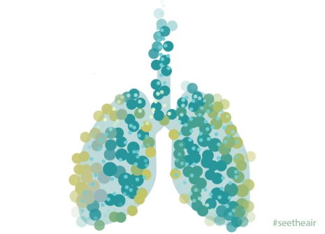 breath lungs
